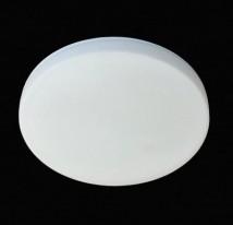 Потолочный светильник 69251/1L
