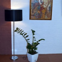 Напольный светильник ТОРШЕР PRIDE S 3379-1