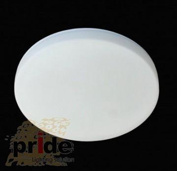 Pride Потолочный светильник 69251/1L