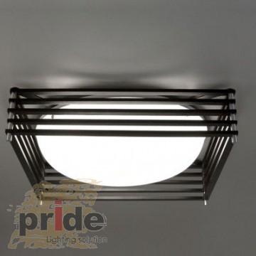 Pride Потолочный светильник 66106BS
