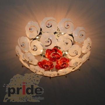 Pride X2006-14