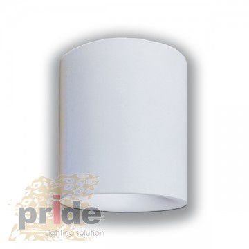 Pride Светильник накладной 70011