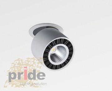 Pride Точечный светильник 47529-12w