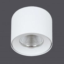 Vision Lighting Точечный накладной светильник MTR137/20W