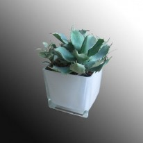 Pride Декоративная ваза EB-HS58554