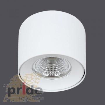 Vision Lighting Точечный накладной светильник MTR169/25W